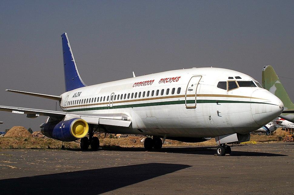 خطای هواپیمایی کشوری کامرون در بررسی سانحه 1995 (سوانح هوایی بخش ششم)